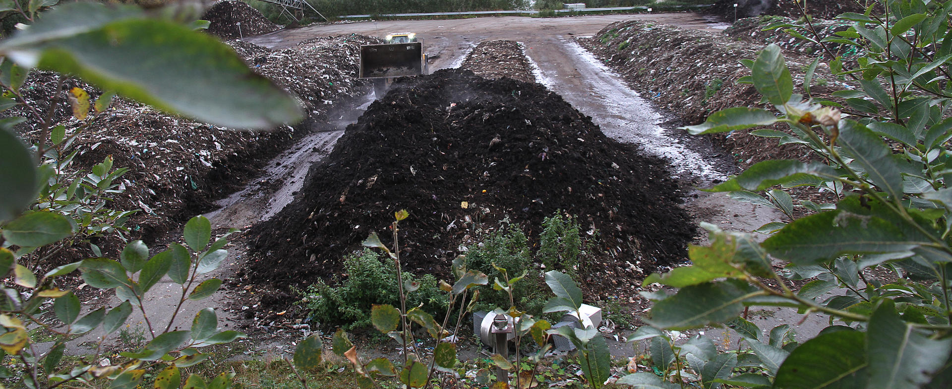 Rankene med matavfall blir til jord.