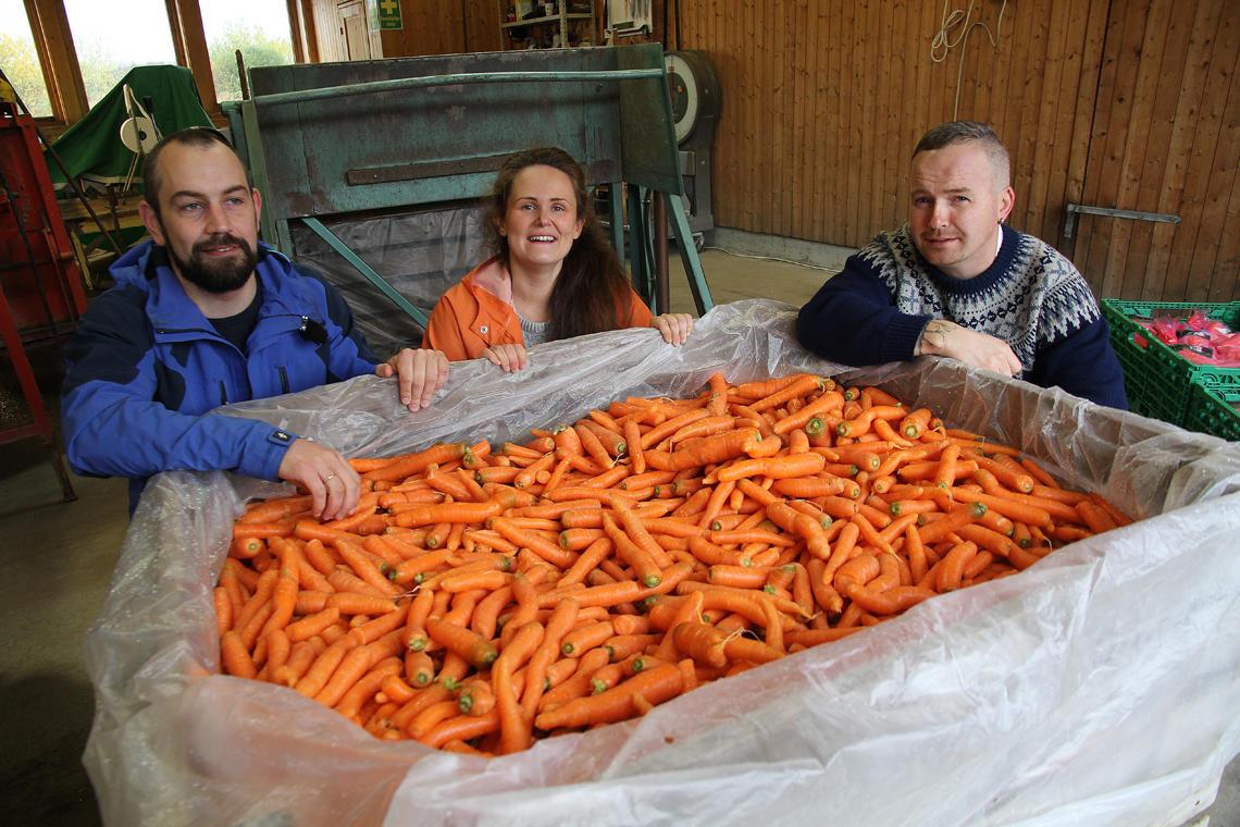 Her får skeive gulrøtter nytt til.