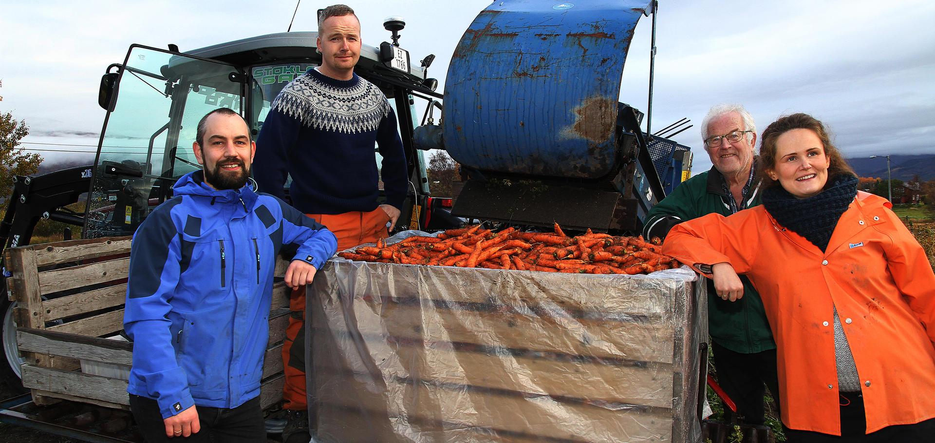 Skeive gulrøtter blir marmelade i Valnesfjord