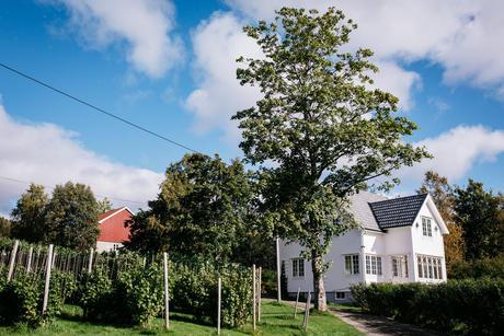 Bjørklund Gård