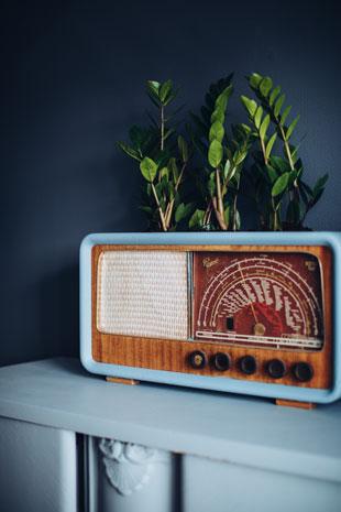 radio som blomstyerstativ