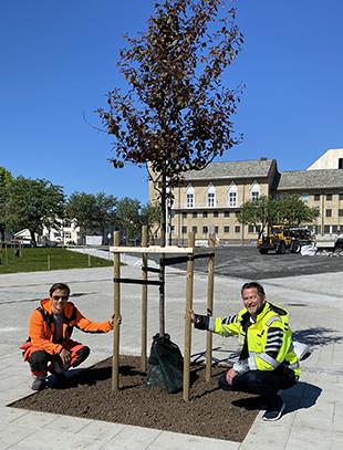 To menn i Solparken i Bodø