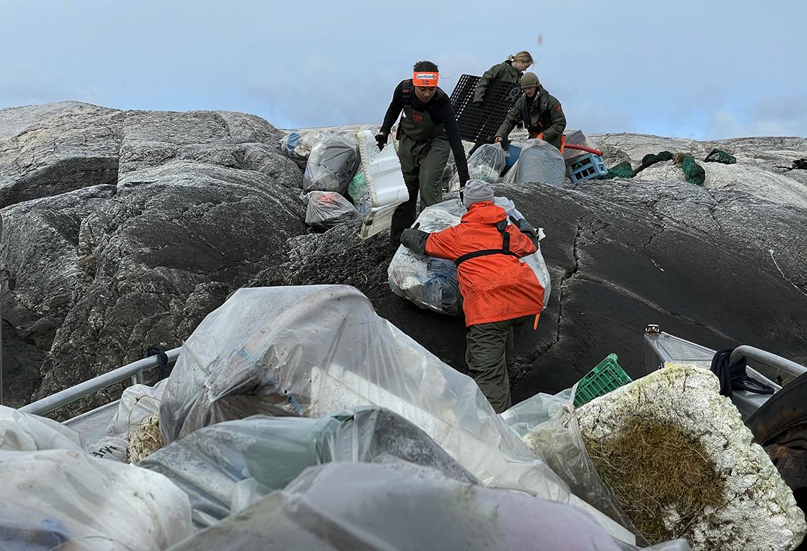 Folk samler inn avfall